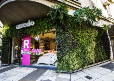 Jardín Vertical Arredo Talcahuano Recoleta