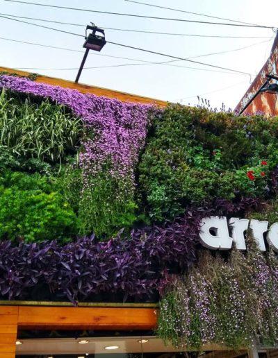 Jardin Vertical Arredo La Plata