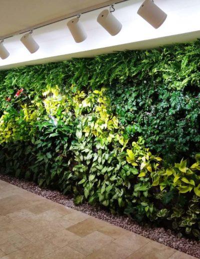 Jardín Vertical Rivera Green