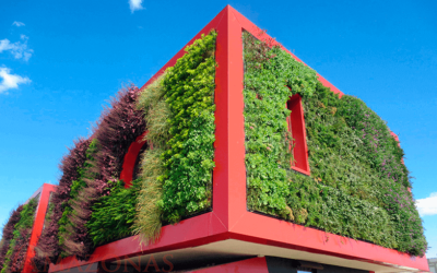 Descubre 5 ideas para obtener un Jardín Vertical fantástico