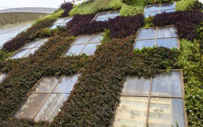 Jardines Verticales: Los pulmones verdes para ciudades menos grises