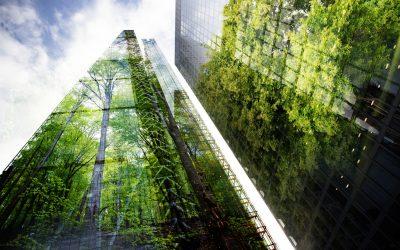 Ciudades Biofílicas, buscando el equilibrio entre Naturaleza y Urbanismo