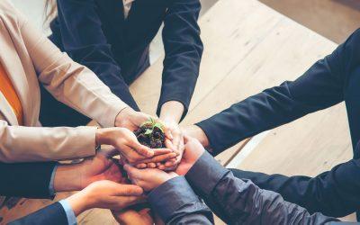 Responsabilidad Social Empresaria y los Jardines Verticales