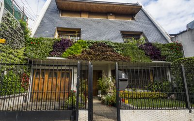 ¿Cuáles son los beneficios de instalar un jardín vertical en tu propiedad?